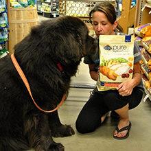 Как правильно выбрать корм для собаки?