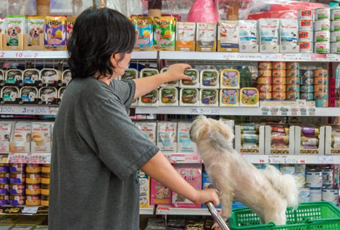 Покупка собачьего корма